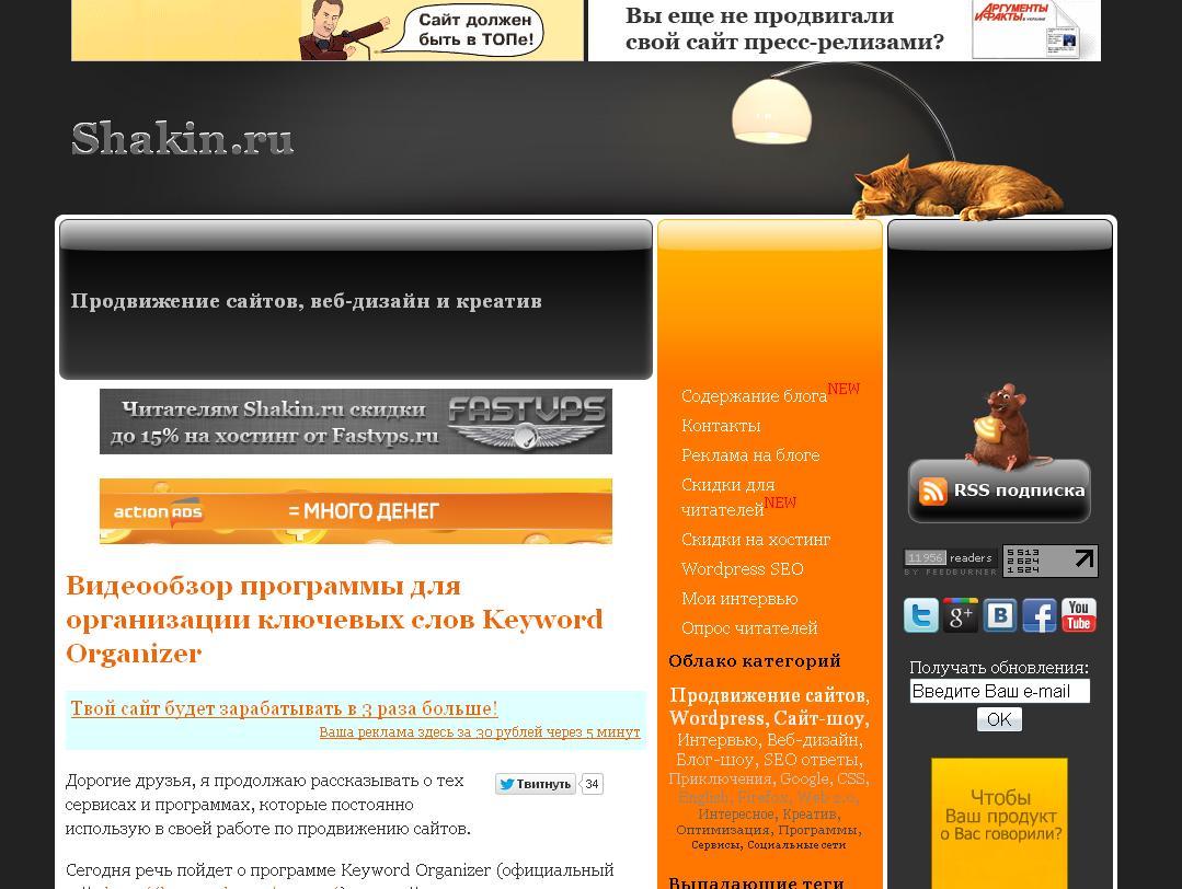 shakin.ru - Продвижение сайтов, веб-дизайн и креатив